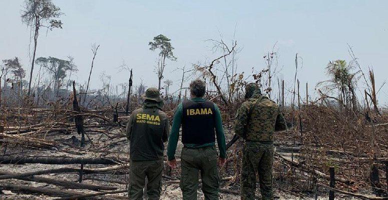 operacao-conjunta-em-colniza-contra-desmatamento-ilegal